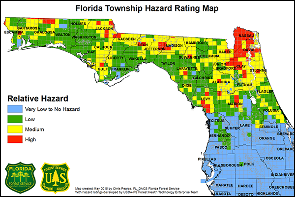 Southern Pine Beetle SPB Hazard Rating Map For Florida - Southern florida map