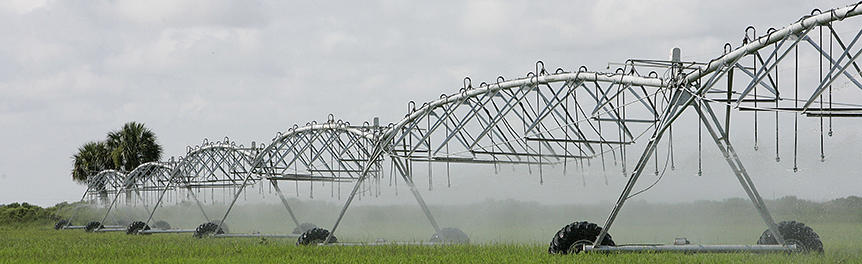 Irrigation sprinklers in a farm field