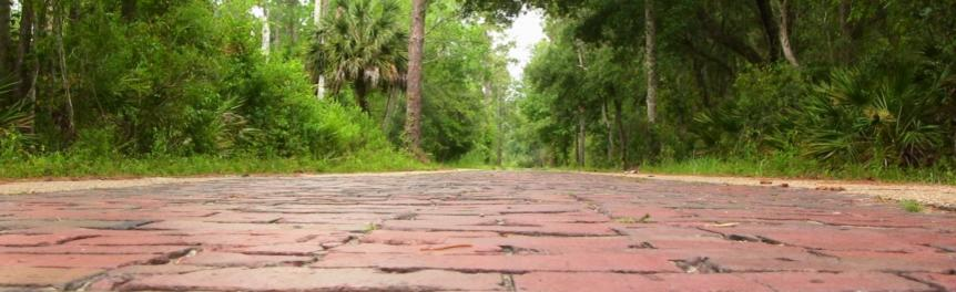 Old Pershing Highway at Tiger Bay State Forest