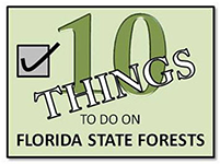 10 Things To Do on Florida State Forests