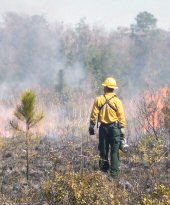 PHOTO: Prescribed burn