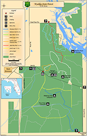 Myakka City Florida Map.Myakka State Forest State Forests Our Forests Florida Forest