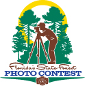 Photo: Florida State Forest Photo Contest