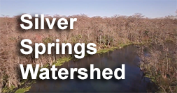 Silver Springs Watershed Video