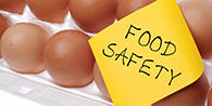 lineview_food_safety