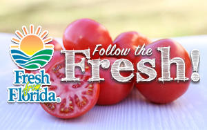 Fresh From Florida, Follow the Fresh!