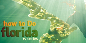 TV Promo: How to Do Florida