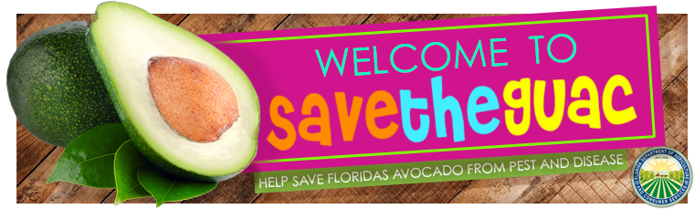 Save the Guac! banner